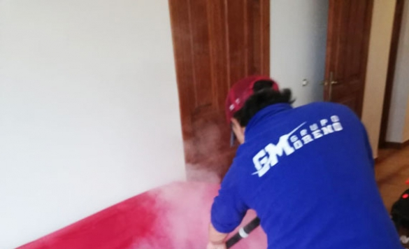 desinfeccion limpieza sofa 12