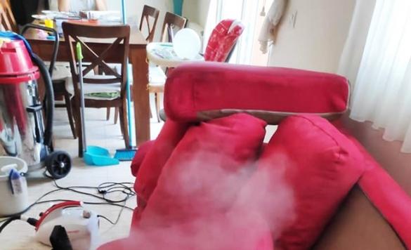 limpieza e higienizacion de sofas