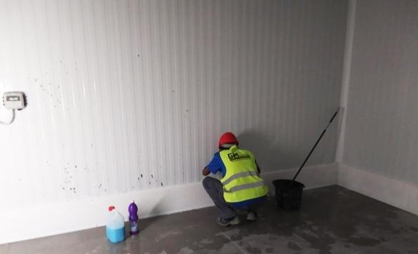 limpiar los paredes
