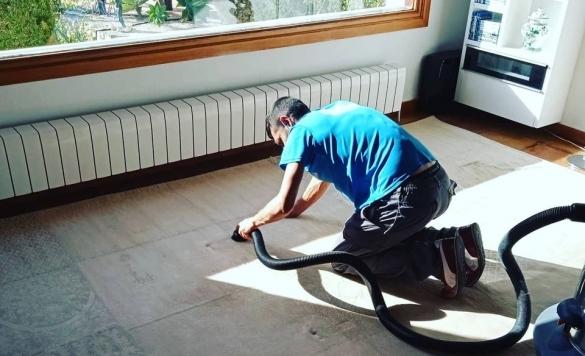 limpieza a vapor alfombras