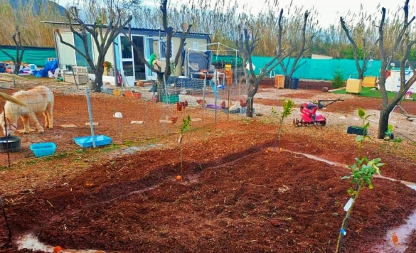 restauración de jardines en calpe