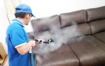 limpieza sofa cuero 1
